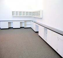 43′ FISHER LAB CABINETS CASEWORK WITH GLASS WALL UNITS L010
