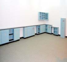 52' Fisher Hamilton Laboratory Cabinets w/ 10' Wall Units
