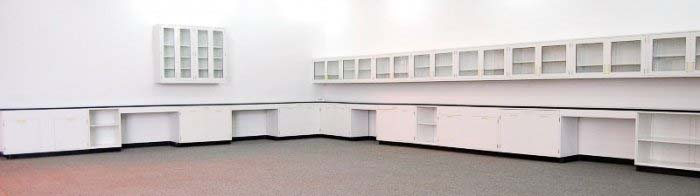 53′ FISHER LAB CABINETS CASEWORK with GLASS WALL UNITS L009