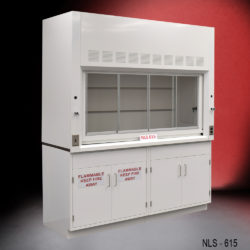 6' Fisher American Fume Hood w/ Flammable & General Storage Cabinet (NLS-615)