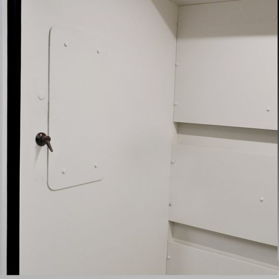 Front view of new fume hood with flammable cabinets from National Laboratory Sales.