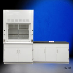 4' Fisher American Fume Hood with General Storage & 5' Laboratory Cabinet Group (CU-101)