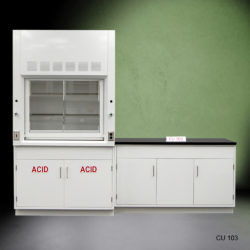 4' Fisher American Fume Hood with ACID Storage & 5' Laboratory Cabinet Group (CU-103)