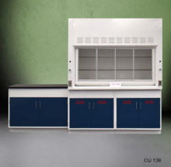 6' Fisher American Fume Hood w/ Acid Storage & 4' Laboratory Cabinet Group (CU-139)