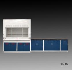 6' Fisher American Fume Hood w/ Acid Storage & 9' Laboratory Cabinet (CU-145)